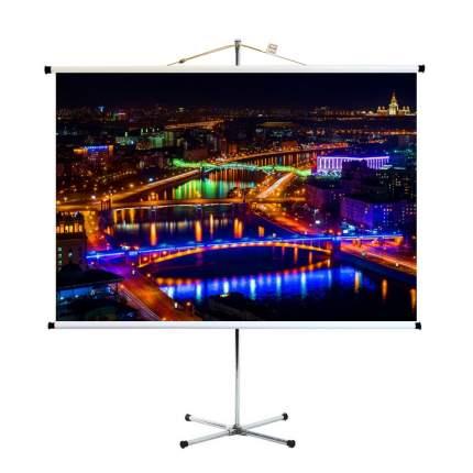 Экран для видеопроектора ПРО-ЭКРАН 200 на 150 см