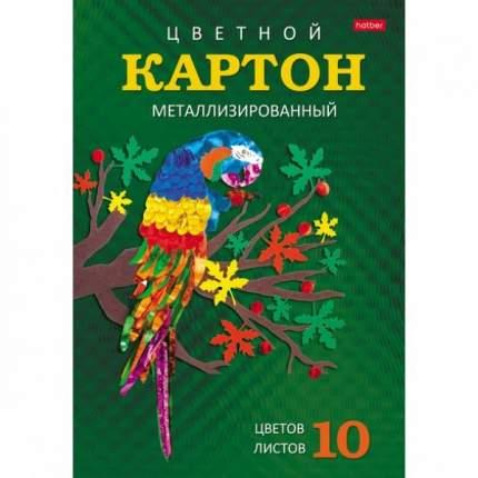 Набор картона цветной. Hatber. 10 листов. 10 цветов. А4. Зеркальный В папке. Яркий попугай