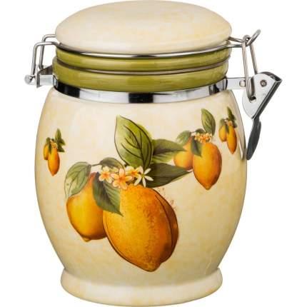 Емкость для сыпучих продуктов AGNESS, Лимоны, 0,75 л