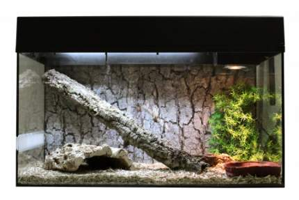Террариум для рептилий Lucky Reptile Стартовый комплект для Змей, черный, 80x52x40 см