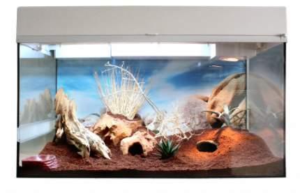 Террариум для рептилий Lucky Reptile Стартовый комплект для Гекконов, белый, 50x40x28 см