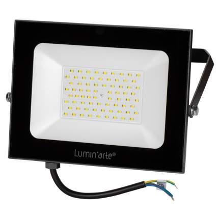 Прожектор светодиодный Lumin`arte LFL-100W/05 100Вт 5700K 7500лм черный IP65