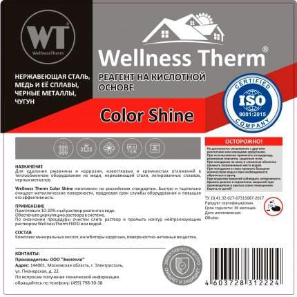 Реагент на кислотной основе WellnessTherm COLOR SHINE 1л.