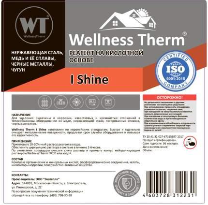 Реагент на кислотной основе WellnessTherm I SHINE 10л.