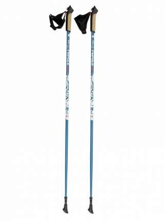 Палки для скандинавской ходьбы Finpole Era 30% Carbon 110 см