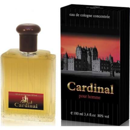 Одеколон Parfums Eternel Cardinal 100 мл