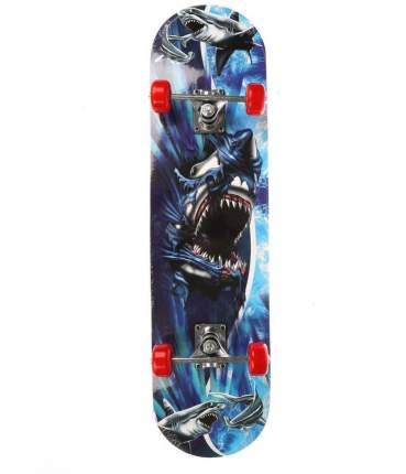 Скейтборд, арт. 636155
