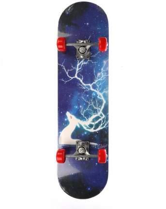 Скейтборд, арт. 636154