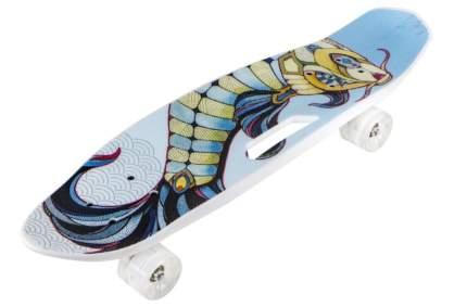 Скейт N.Ergo Т17041С