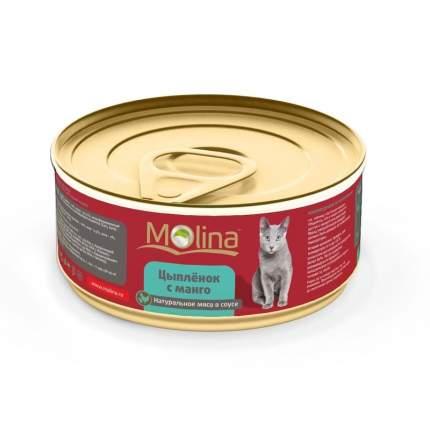 Влажный корм для взрослых кошек Molina с цыпленком и манго в соусе в консервах 80 г 12шт