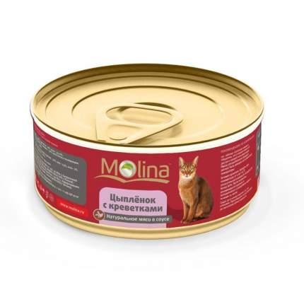 Влажный корм для взрослых кошек Molina с цыпленком и креветками в соусе 80 г 12шт