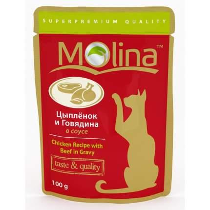 Влажный корм для взрослых кошек Molina с цыпленком и говядиной в соусе 100 г 24шт