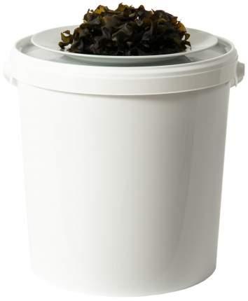 Чипсы из беломорской ламинарии 0,6 кг