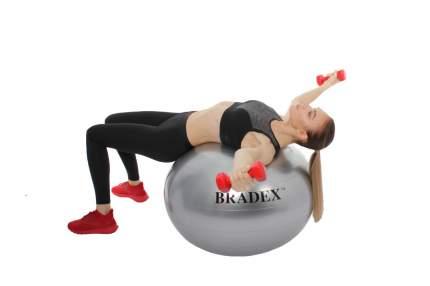 Мяч Bradex Фитбол SF 0355, серебристый, 85 см