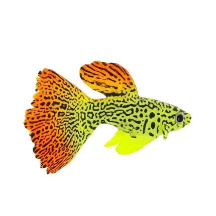 Gloxy флуоресцентная аквариумная декорация рыба гуппи на леске 8х2,5х4,5 см
