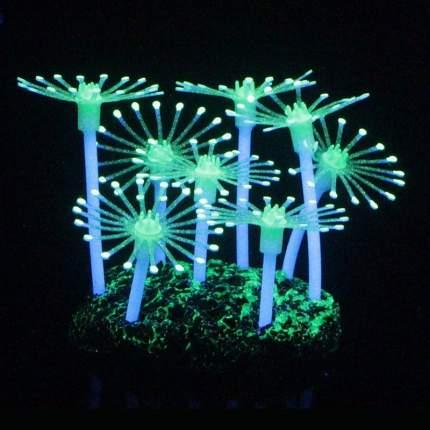 Gloxy флуоресцентная аквариумная декорация анемон 8,5x7x9,5 см