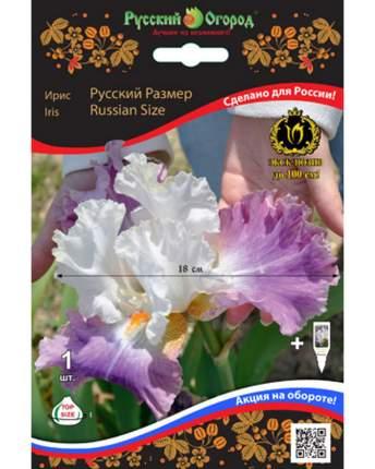Ирис Русский Размер Русский огород 201356