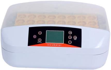 Инкубатор автоматический HHD 32 на 32 яйца, ж/к дисплей светодиод