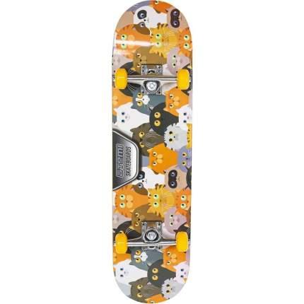 Скейтборд ATEMI 31*8, ASB31D01