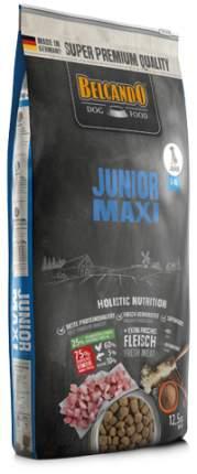 Сухой корм для щенков BELCANDO Junior Maxi, птица, 12.5кг