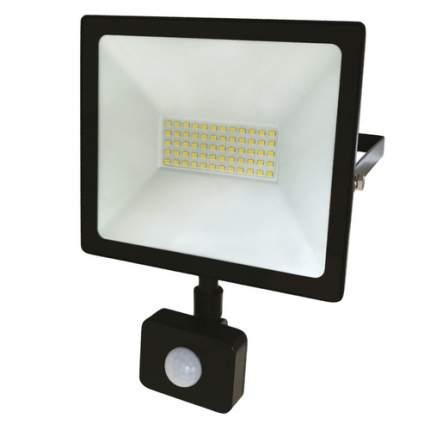 Прожектор уличный REXANT 605-009, 50Вт, с датчиком движения