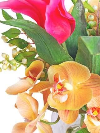 Gerard de ros Орхидея Фаленопсис и тюльпаны