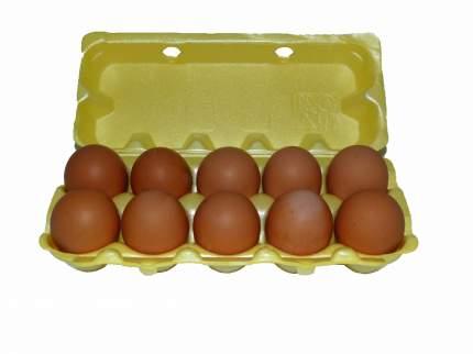 Яйцо куриное столовое отборное, 10 шт