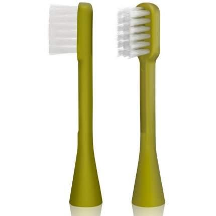Сменная насадка для зубной щетки Hapica Панда от 3 до 10 лет, 2 шт,зеленый