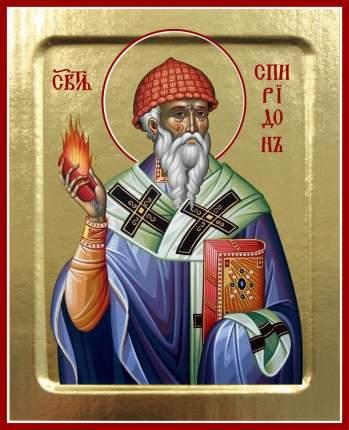 Икона святителя Спиридона Тримифунтского (с огнем в фиолетовом облачении)на дереве 125х160
