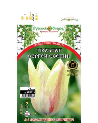 Тюльпан Сергей Есенин Русский огород 201335