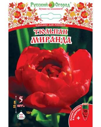 Тюльпан Миранда Русский огород 201310