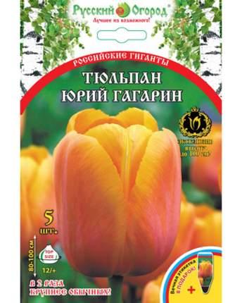 Тюльпан Юрий Гагарин Русский огород 201328