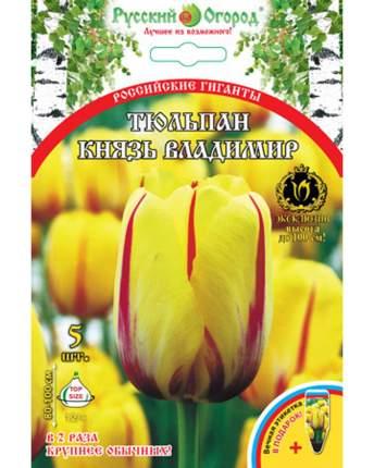 Тюльпан Князь Владимир Русский огород 201324