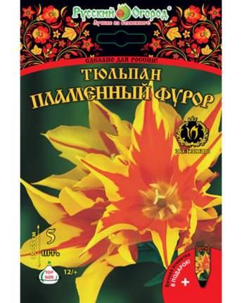Тюльпан Пламенный фурор Русский огород 201423