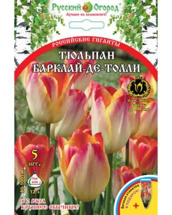 Тюльпан Барклай-де-Толли Русский огород 201419