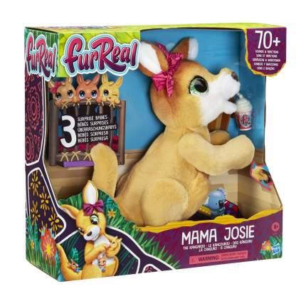 Игровой набор Hasbro Furreal Кенгуру Джози и ее малыши E67245L0