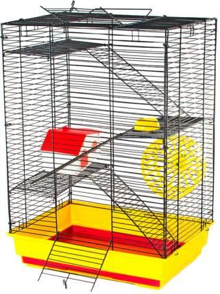 Клетка для грызунов Дарэлл Саша стандарт+ 3 этажа 41 х 30 х 58 см