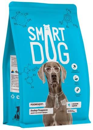Сухой корм для собак Smart Dog, лосось, рис, 18кг
