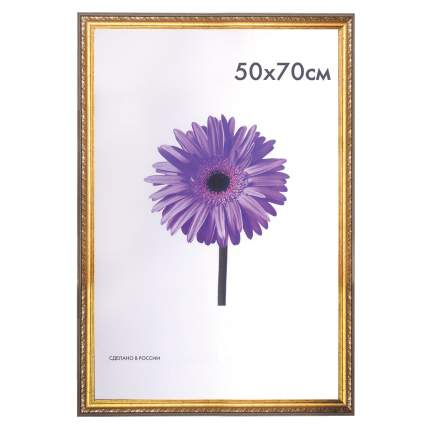 "Рамка премиум 50х70 см, пластик, багет 33 мм, ""Dorothy"", золото, 0023-50-4274"