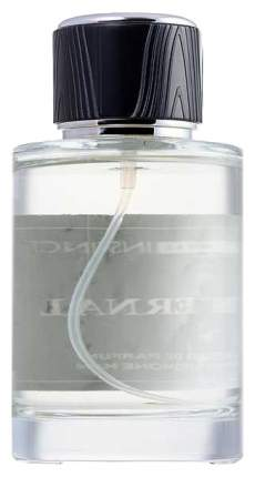 Парфюмерная вода с феромонами Eternal 100 мл