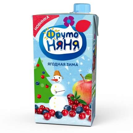 ФрутоНяня Сок Ягодная зима (яблоко-черника-клюква-малина) с 3 лет, 500 мл