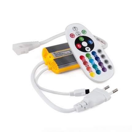Контроллер Elektrostandard для ленты LS002 220V RGB (50m) LSC 018