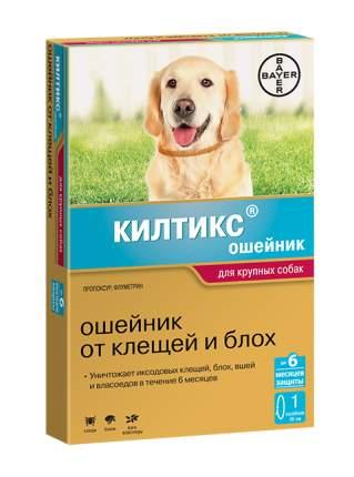 Ошейник для крупных собак против клещей, блох, вшей и власоедов длина BAYER KILTIX 66 см