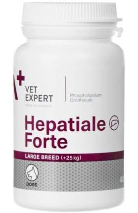 VETEXPERT ГЕПАТИАЛЕ ФОРТЕ для собак для поддержания и восстановления печени, 40 таб