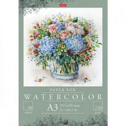 Набор бумаги для рисования акварелью Hatber 20 листов А3 В папке Цветочных красок акварель