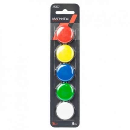 Магниты для магнитно-маркерных досок Hatber 5 шт 3 см Цветные В блистере с европодвесом