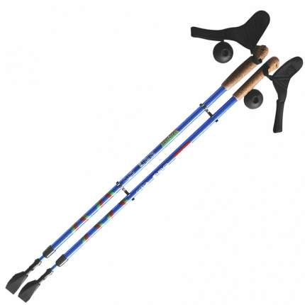Палки для скандинавской ходьбы Ergoforce Ergo Nordic, синий, 110-140 см