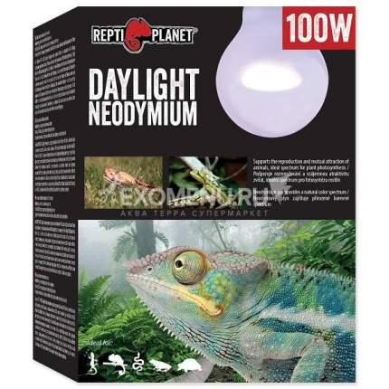 Неодимовая лампа для террариума Repti Planet Лампа неодимовая 100W