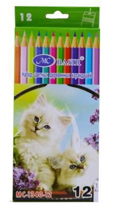 """Набор цветных карандашей """"Животные"""", 12 цветов"""