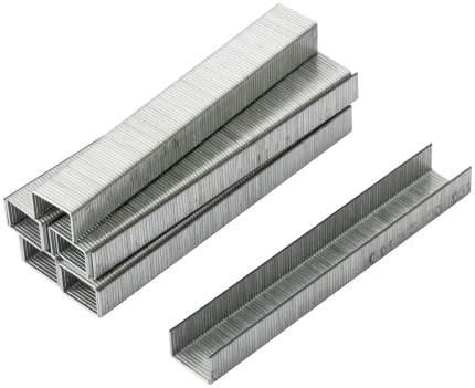 Скобы для степлера (тип 53)  8 мм, 1000 шт. FIT 31308